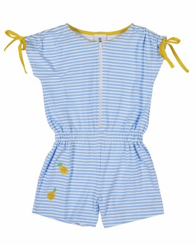 Printed Blue & White Stripe with Gathered Shoulders and Pineapples