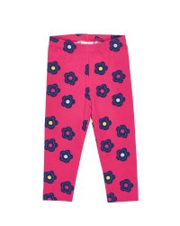 Fuchsia, Navy, Grey Floral Legging