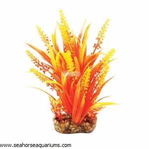 Aquaone Orange Cabomba Med