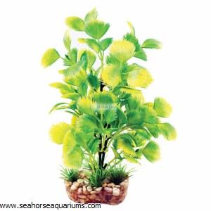 Aquaone Yellow Hottonia Med