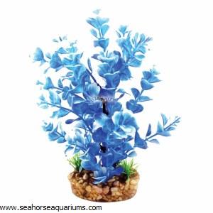 Aquaone Blue Ludwigia Med