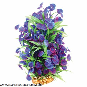 Aquaone Blue Centauria Lg