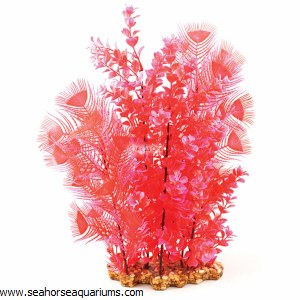 Aquaone Red Hygrophila XL