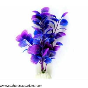 """Boyu  8"""" Purple Fan Plant"""