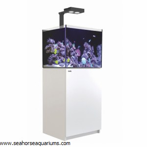 RedSea Reefer Deluxe 170 White
