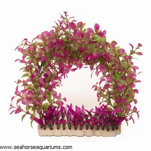 Plant Green & Purple Arch