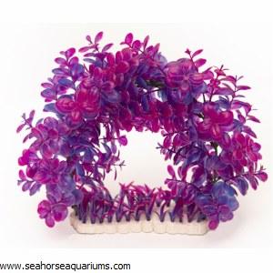 Plant Violet & Purple Arch