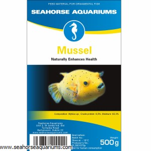 SA Mussel 500g