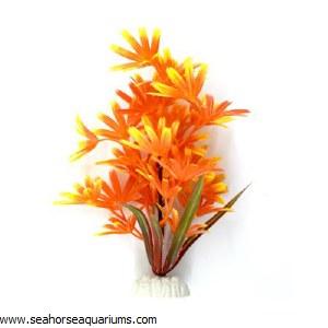 "Boyu 8"" Orange Maple Plant"