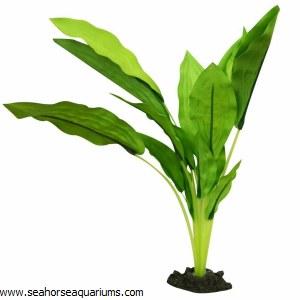 Silk Plant Amazon Broad L 30cm