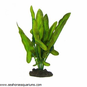 Silk Plant Sword Green Wh 20cm