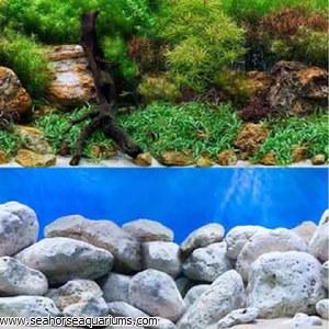 24 Aqua Garden Bright Stone