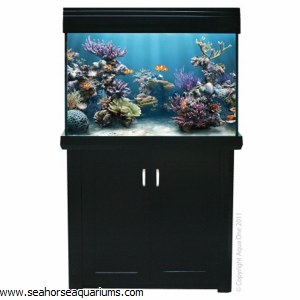 Aqua One AquaReef 300 Black