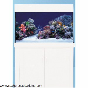 Aqua One AquaReef 400 White