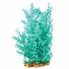 Aquaone Blue Cabomba XL