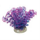 Purple & Blue Fern & Base