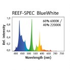 Red Sea 24W Blue/White T5
