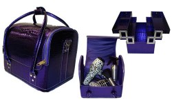 Hair Tools Beauty Tools Purple Case