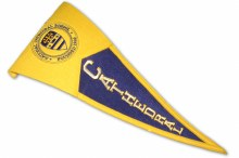 PENNANT-WOOL-NCS PURPLE & GOLD