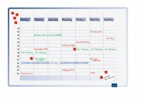 Accents Linear Weekly Planner 60x90cm