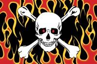 KTC Skull and Crossbones Flag