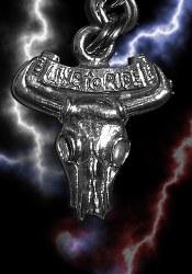 ZP Steer Skull