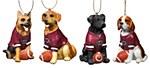 South Carolina Gamecocks Dog Ornament
