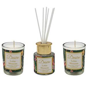 Desire Tropical Votive & Mini Reed Diffuser Set - Lotus Blossom