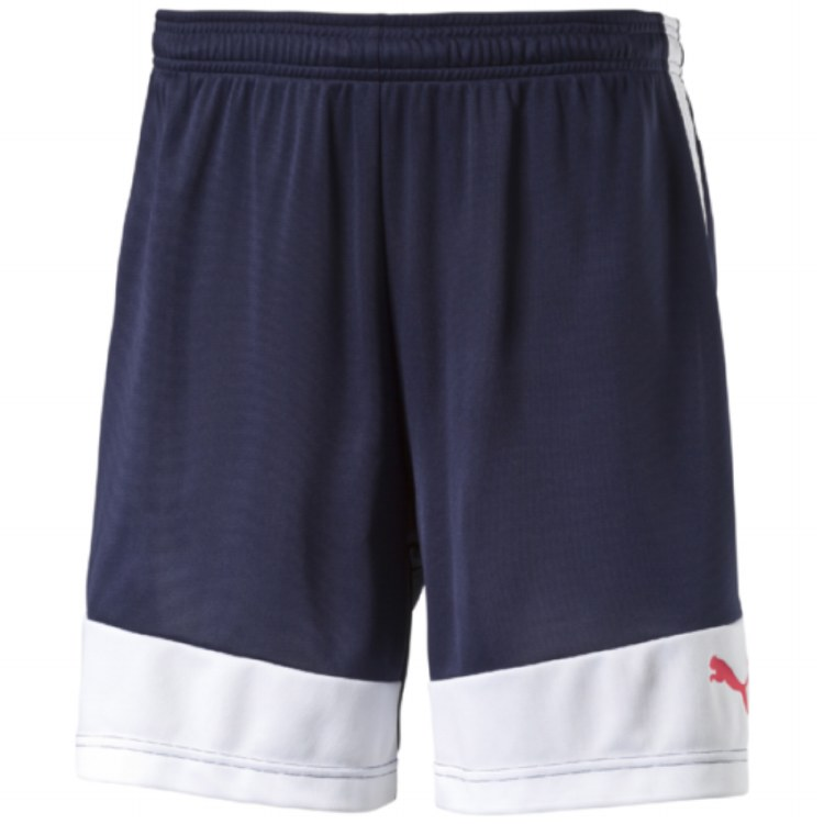 IT EvoTrg Shorts