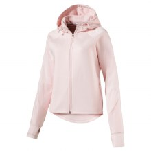Ladies Evostripe Hoody
