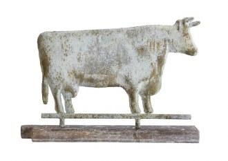 Magnesia Cow