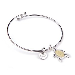 Bangle Beach Turtle FLBE