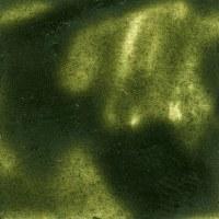 Encaustic Cake Green Earth 40ML