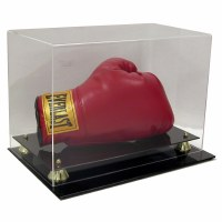 SG AD73 BOXING GLOVE DISPLAY H