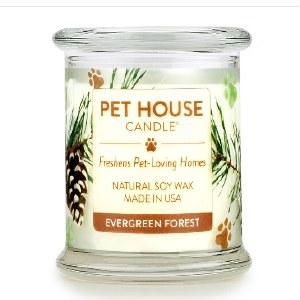Pet House Evergreen Forest