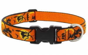 """Wicked 1"""" Collar 16-28"""
