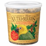 Nutriberries Conure