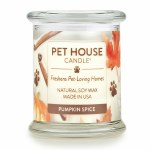 Pet House Candle Pumpkin