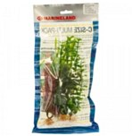 Plant small multipack c2