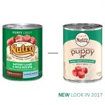 Nutro Puppy Lamb in Gravy