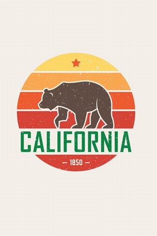California Sun Vector Keychain