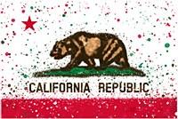 Ca Splatter Flag Magnet