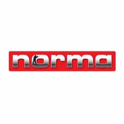 Norma .22-250 Rem. 50Gr V-Max
