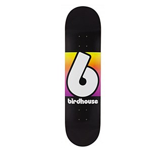 Birdhouse Block Logo Black/Multi 8.00""