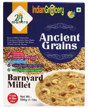 24 Mantra Organic Barnyard Millet 500g