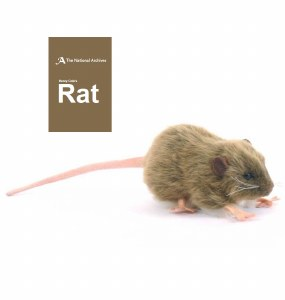 Sir Henry Cole's Rat