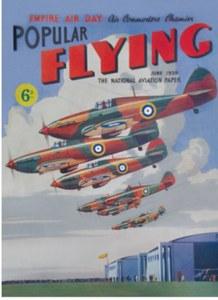 Popular Flying Fridge Magnet