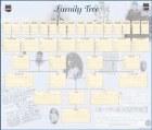 Family History Wall Chart