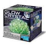 Glow Crystal Growing