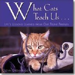 What Cats Teach Us